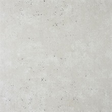 Drizzle Silver Speckle Wallpaper