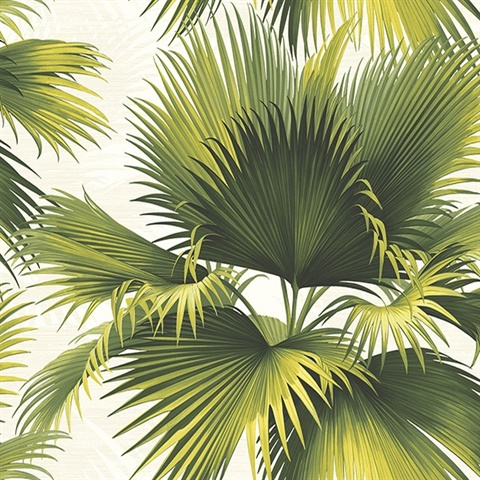 Endless Summer Green Palm