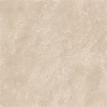 Erith Taupe Marble Texture