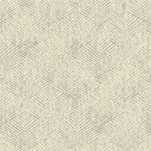 Fans Taupe Texture