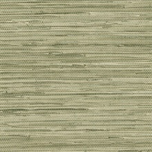 Faux Horizontal Grasscloth