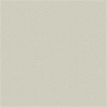 French Linen Limestone Type II 20oz Wallpaper