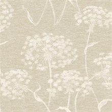 Garvey Taupe Dandelion Wallpaper