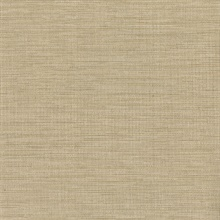 Giana Taupe Horizontal Silk Wallpaper