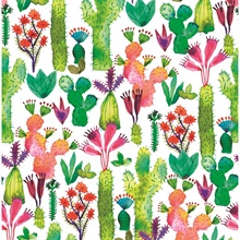 Green Cactus Garden Wallpaper