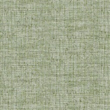 Green Papyrus Weave