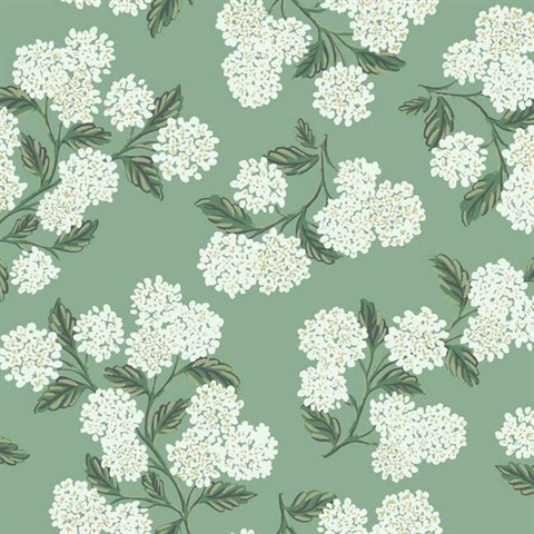 Green & White Hydrangea Floral Rifle Paper Wallpaper