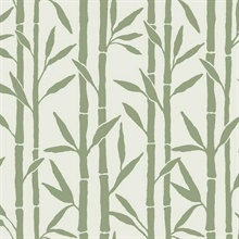Green & White Vertical Bamboo Reed Grove Wallpaper