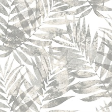 Grey Fern Leaf
