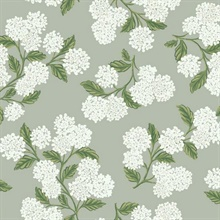 Grey, Green & White Hydrangea Floral Rifle Paper Wallpaper