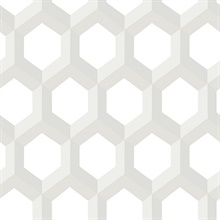 Hex Neutral Geometric Wallpaper