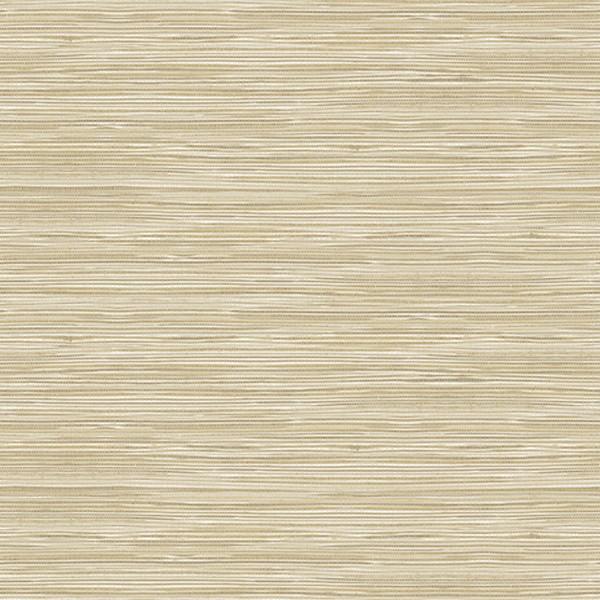 Holiday String Beige Texture Wallpaper Ps41605 Modern