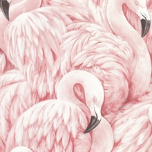 Horace Light Pink Flamingos Wallpaper