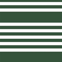 Horizontal Scholarship Stripe
