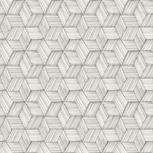 Intertwined Grey Geometric