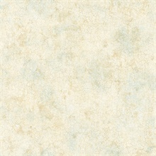 Key West Beige Texture