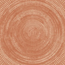 Lalit Burnt Sienna Medallion Wallpaper