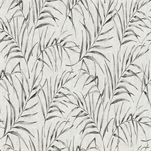 Lani Grey Coastal Leaves Wallpaper