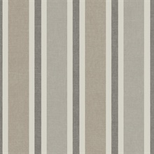 Large 2 1/2 In Vertical Stripe