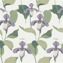 Lavender & Green Lady Slipper Floral Wallpaper