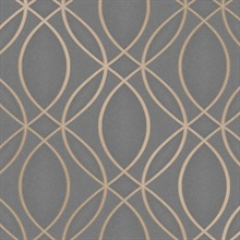 Lisandro Taupe Geometric Lattice