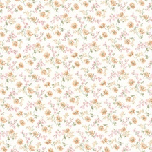 Lizabeth Peach Allover Floral