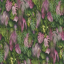 Luana Pink & Green Tropical Forest Plants Wallpaper