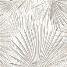 Macduff Silver Palm Fronds Wallpaper