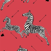 Masai Red Zebra Wallpaper