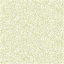Metallic Gold & White Champagne Metallic Polka Dots Rifle Paper Wallpa