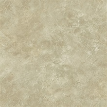 Neutral Marble Texture