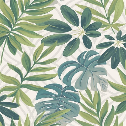 Nocturnum Green Leaves Wallpaper