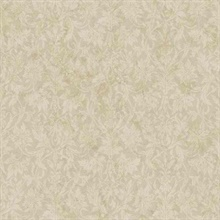 Ombre Damask Texture