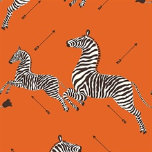 Orange Zebra Wallpaper