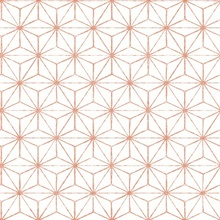 Orion Coral Geometric
