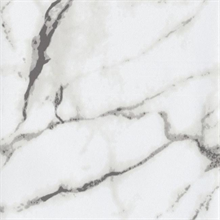 Palace Marble