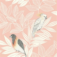 Paradise Oriole and Parakeet Bird Pink Wallpaper