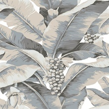 Paradisio Tropical Palm Tree Grey Wallpaper