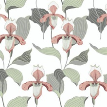 Peach & Grey Lady Slipper Floral Wallpaper