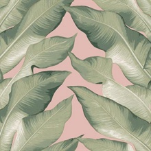 Pink & Green Beverly Hills Large Banana Leaf Wallpaper