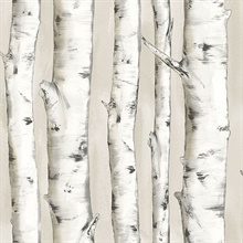 Pioneer Off-White Birch Tree