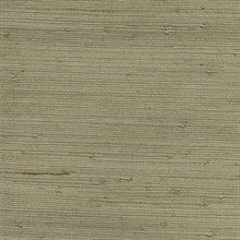 Qiantang Grey Grasscloth