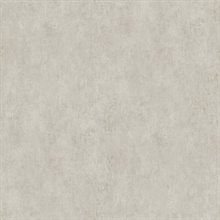 Rainey Taupe Stucco Textured Wallpaper