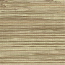 River Grass Paperweave