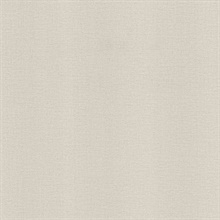 River Light Grey Linen Texture