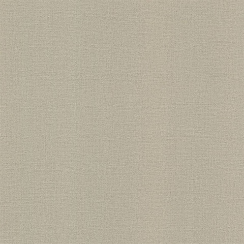 River Taupe Linen Texture