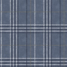 Rockefeller Navy Plaid