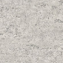 Rough Industrial Concrete Taupe