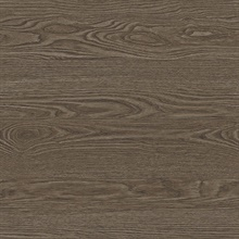 Salvaged Wood Brown Plank Wallpaper