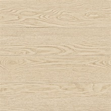 Salvaged Wood Neutral Plank Wallpaper